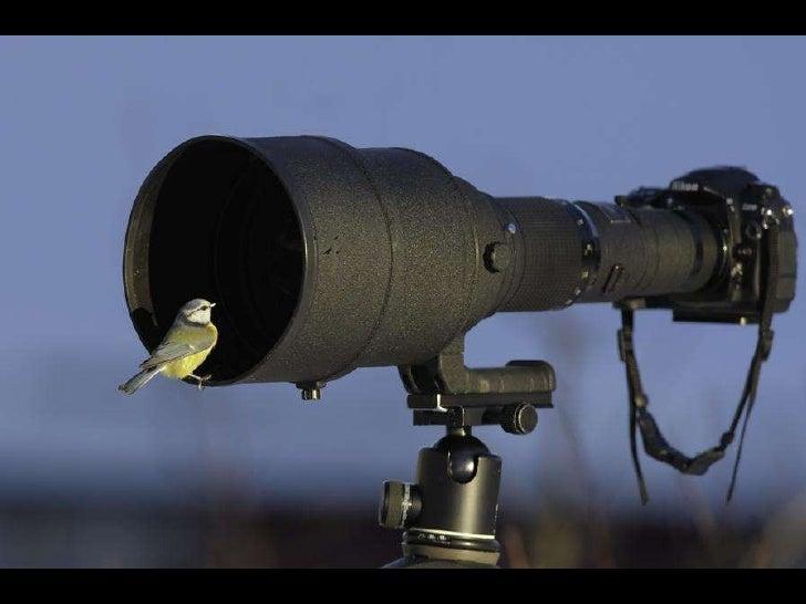 Surveillance Slide 14
