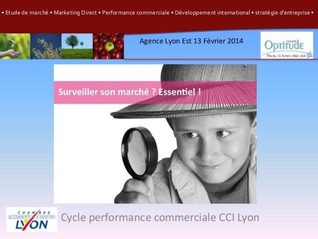 • Etude de marché • Marketing Direct • Performance commerciale • Développement international • stratégie d'entreprise •  A...