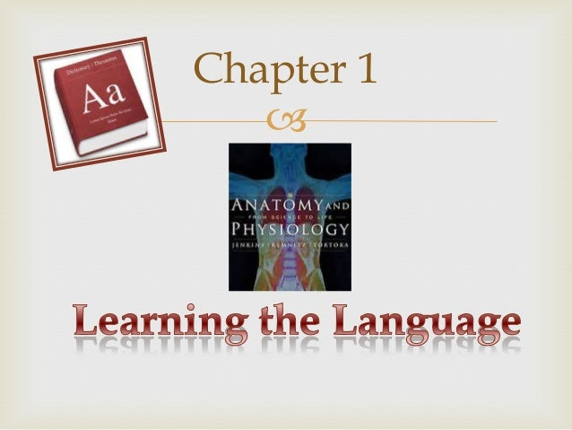 Survey of human anatomy and physiology Chapter 1 to 4
