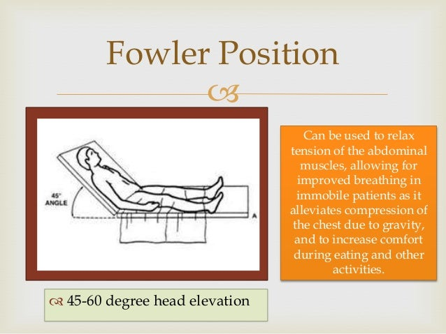 Survey Of Human Anatomy And Physiology Chapter 1 To 4 on chair elevation