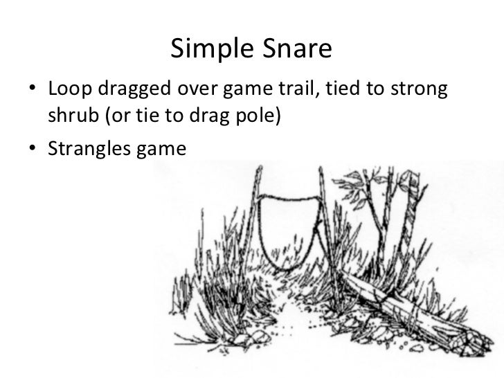 Survival - Traps and snares - 715 squadron