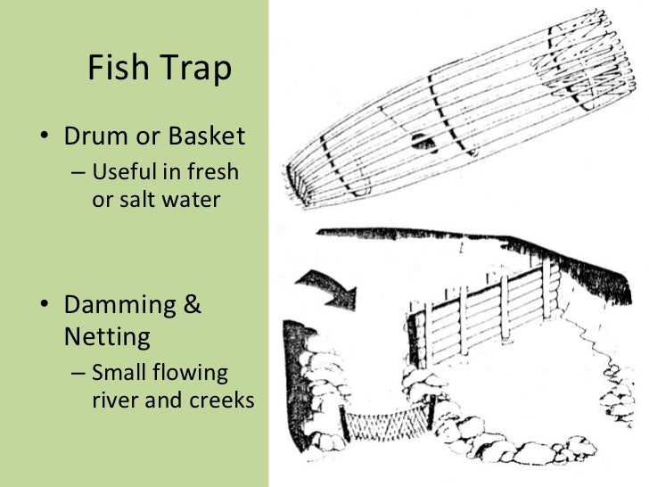 basic survival traps