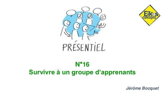 N°16 Survivre à un groupe d'apprenants Jérôme Bocquet