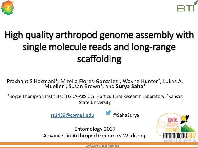 www.citrusgreening.org High quality arthropod genome assembly with single molecule reads and long-range scaffolding Prasha...