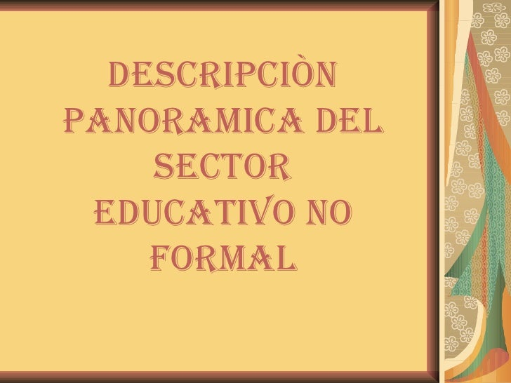 DES DESCRIPCIÒN PANORAMICA DEL SECTOR EDUCATIVO NO FORMAL