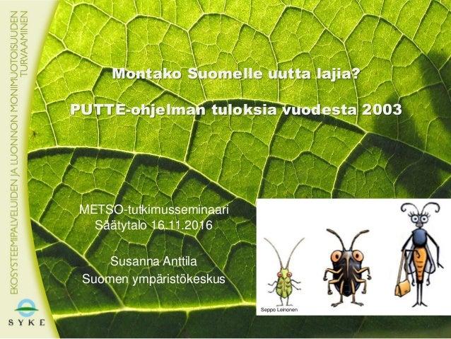 Montako Suomelle uutta lajia? PUTTE-ohjelman tuloksia vuodesta 2003 METSO-tutkimusseminaari Säätytalo 16.11.2016 Susanna A...