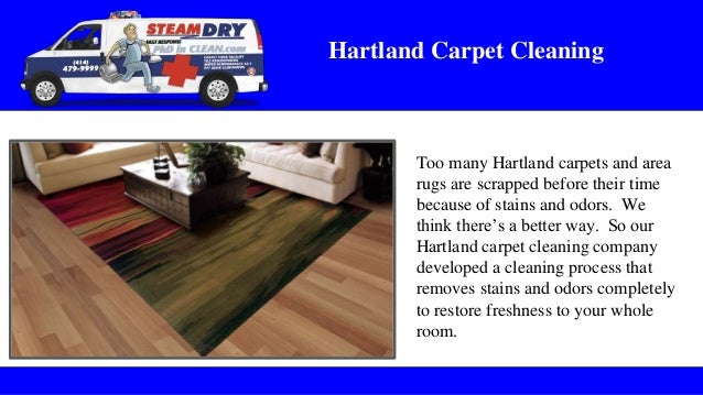 Sussex Carpet Cleaning Services