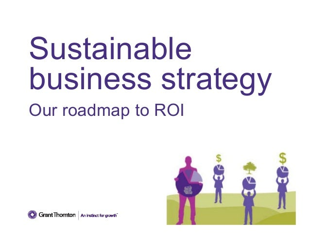 Sustainable business strategy: Our roadmap to ROI