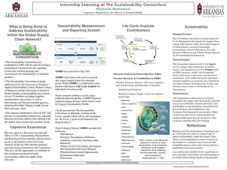 Internship Learning at The Sustainability Consortium                                                                      ...