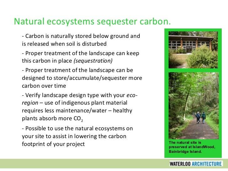 Sustainable design part six carbon neutral design for Carbon neutral home designs