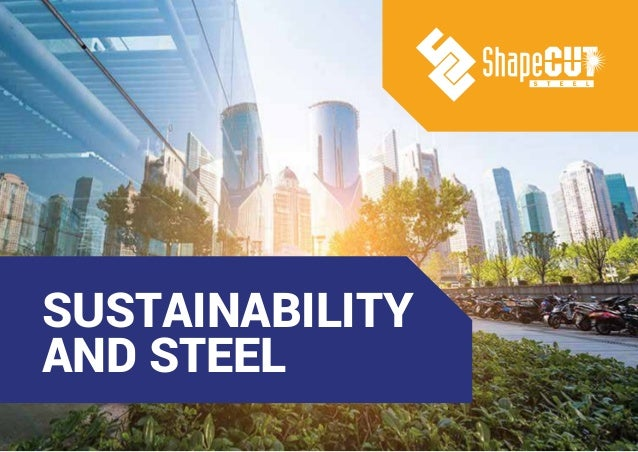 SUSTAINABILITY AND STEEL