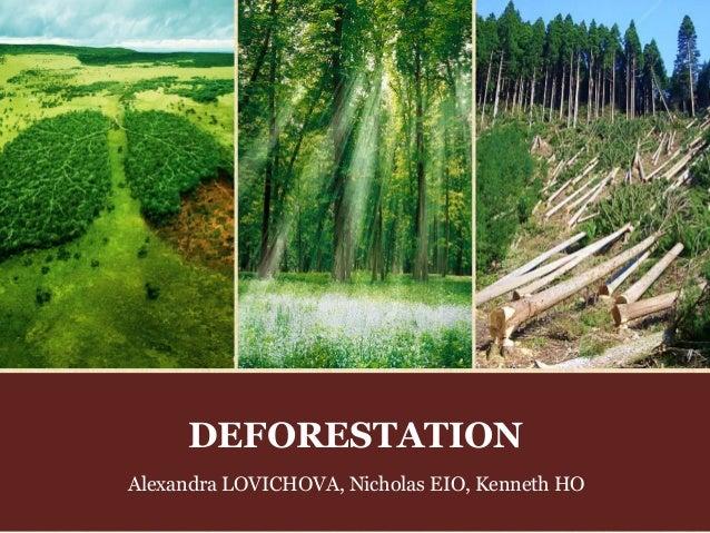 deforestation thesis statement