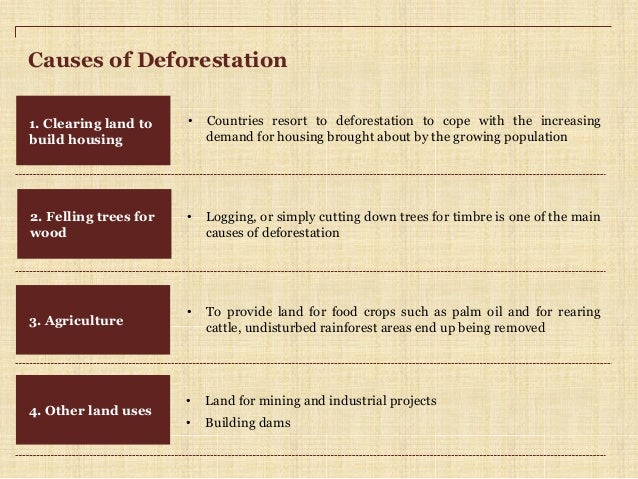 essay deforestation causes Deforestation essay deforestation is the cutting of trees permanently by the people to clear forests to get free land for further usage like farming, housing, industrialization, urbanization, etc deforestation is arising as the main environmental and social issue which has now taken the form of more than a powerful demon.