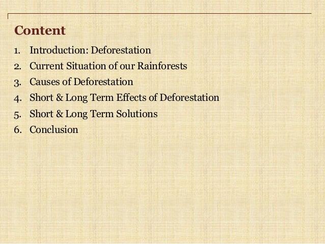 deforestation essay pdf