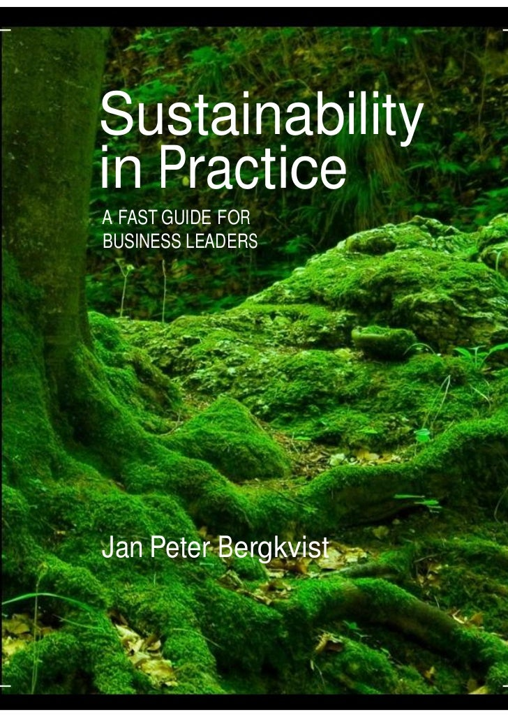 Sustainability         in Practice          A FAST GUIDE FOR          BUSINESS LEADERS          Jan Peter BergkvistCopyrig...