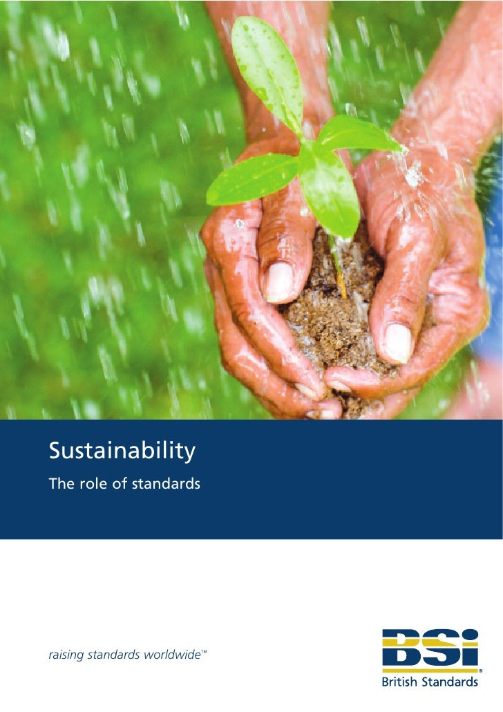 Sustainability The role of standards     raising standards worldwide™