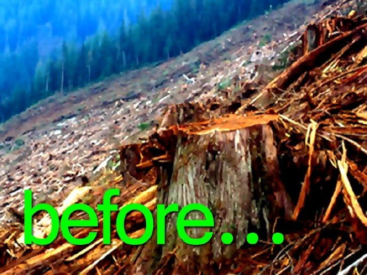 Sustainable development Slide 3