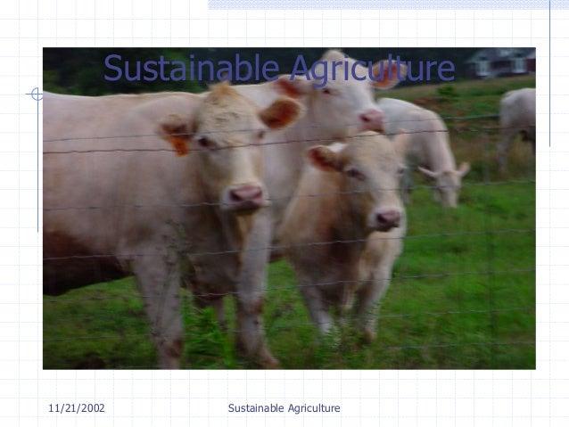11/21/2002 Sustainable Agriculture Sustainable Agriculture