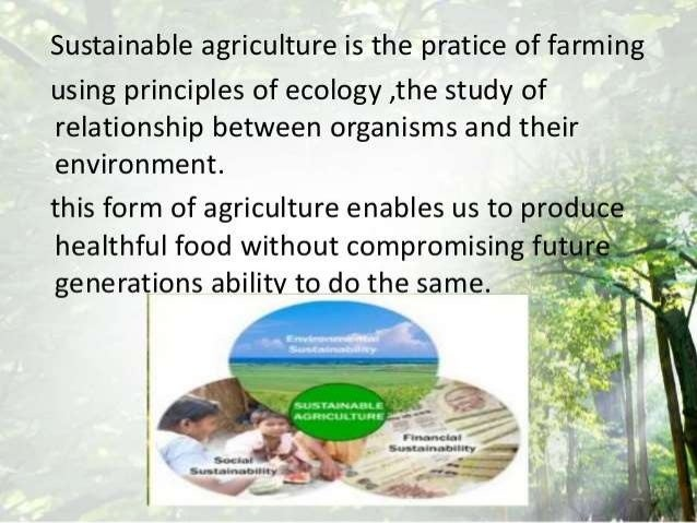 technology for sustainable agriculture essay This essay discusses 100 significant books published on sustainable agriculture and sustainable forestry concern about deforestation, global warming, the ozone layer, the accumulation of chemicals in soils, food safety, and leaving viable land for future generations have all contributed to the current interest in sustainable agriculture and.