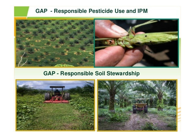 Fao Organic Agriculture Environment And Food Security