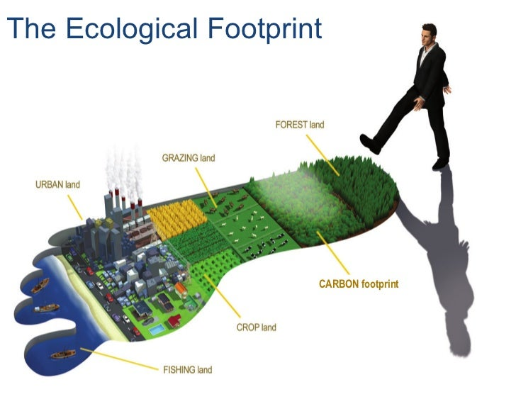 sustainability population growth and ecological footprint Report on ecological footprint in china 35 cciced  of economic growth and  • three factors control china's ecological footprint: population, consumption.