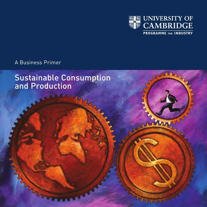 A Business Primer  Sustainable Consumption and Production