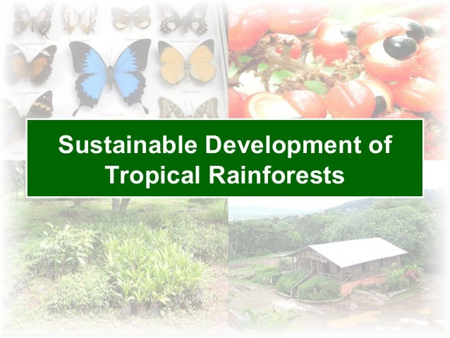 Sustainable Development of   Tropical Rainforests