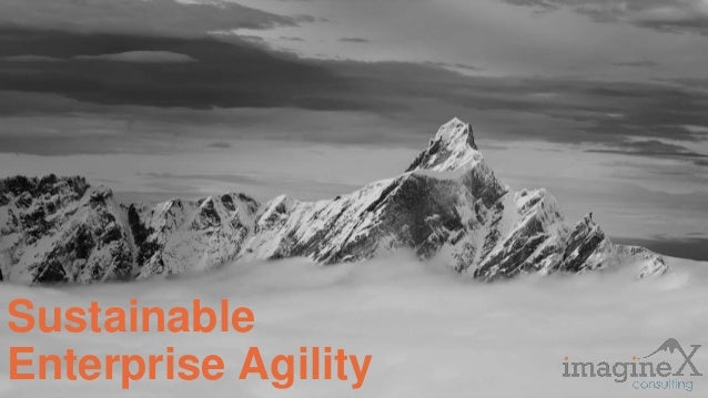 Proprietary and Confidential www.imagineXconsulting.com Sustainable Enterprise Agility