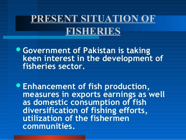 fishery sector in pakistan Fishery sector in pakistan aquaculture is a rather recent activity in pakistan and is still in its infancy nevertheless there is immense potential for development of.