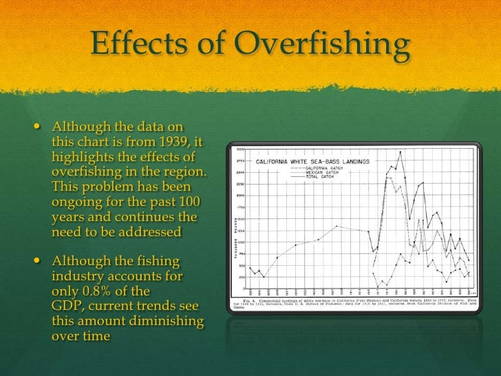 reasons of overfishing Global perspectives: overfishing  this type of overfishing is a serious environmental as it is one of the main reasons why there is a.