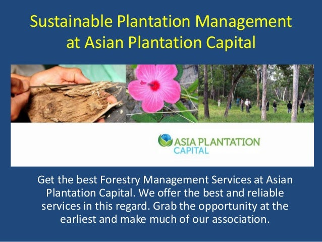 Sustainable Plantation Management at Asian Plantation Capital Get the best Forestry Management Services at Asian Plantatio...