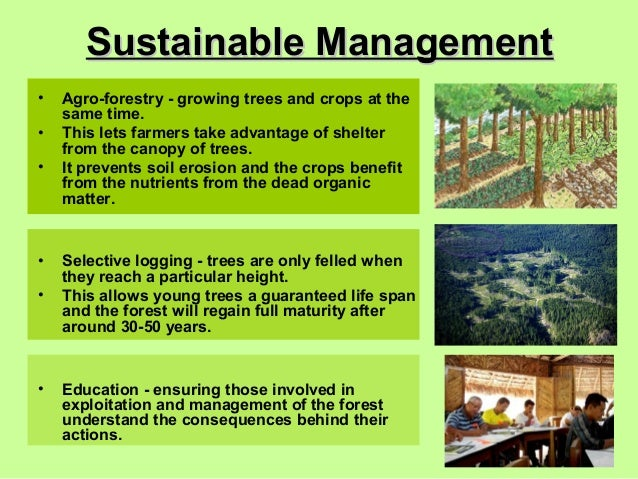 sustainability management A core aspect of sustainability management is that it can be a marketing  instrument for strengthening organisations' brands and image in order to do this .