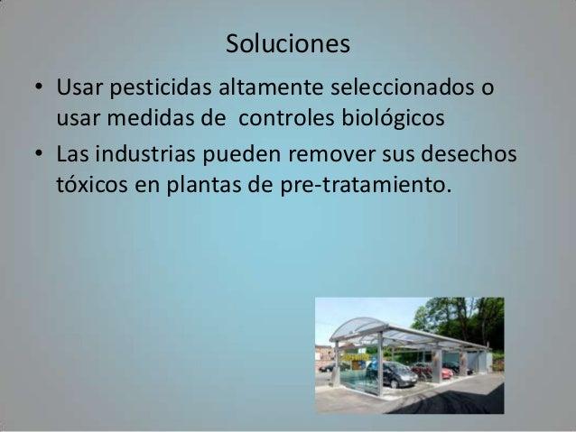 Soluciones• Usar pesticidas altamente seleccionados o  usar medidas de controles biológicos• Las industrias pueden remover...