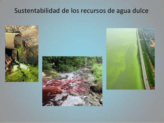 Sustentabilidad de los recursos de agua dulce