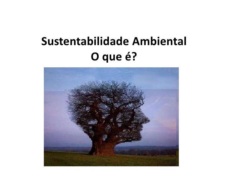 Sustentabilidade AmbientalO que é?<br />