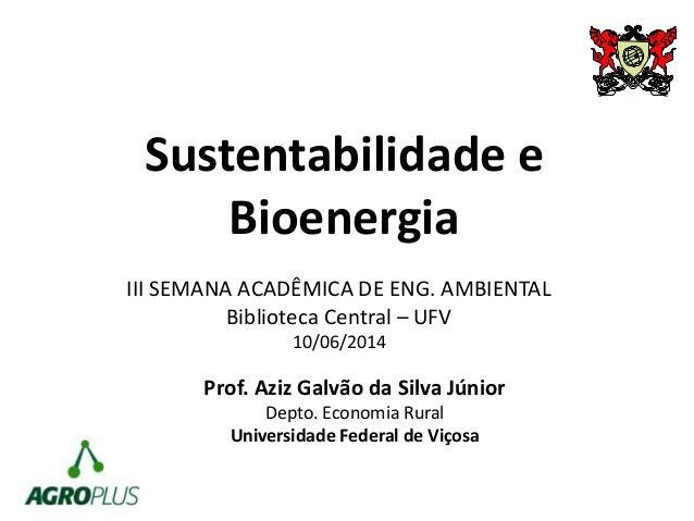 Sustentabilidade e Bioenergia Prof. Aziz Galvão da Silva Júnior Depto. Economia Rural Universidade Federal de Viçosa III S...