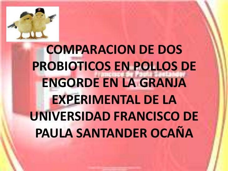 COMPARACION DE DOS PROBIOTICOS EN POLLOS DE ENGORDE EN LA GRANJA EXPERIMENTAL DE LA UNIVERSIDAD FRANCISCO DE PAULA SANTAND...