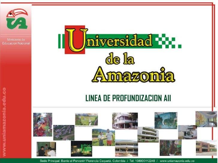 LINEA DE PROFUNDIZACION AII