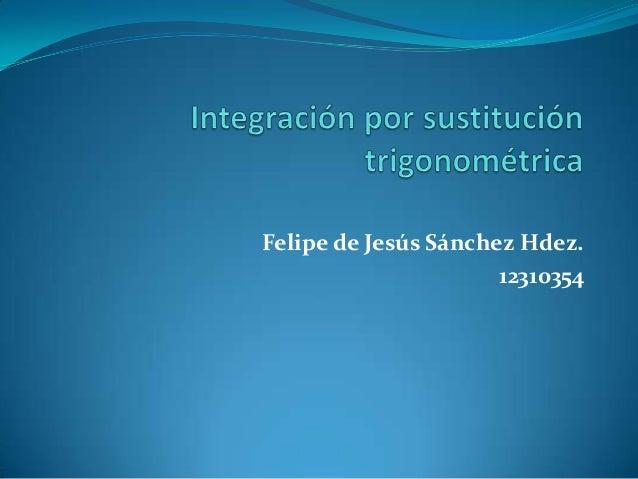 Felipe de Jesús Sánchez Hdez.12310354