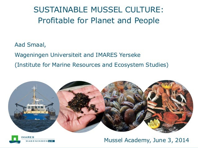 SUSTAINABLE MUSSEL CULTURE: Profitable for Planet and People Aad Smaal, Wageningen Universiteit and IMARES Yerseke (Instit...