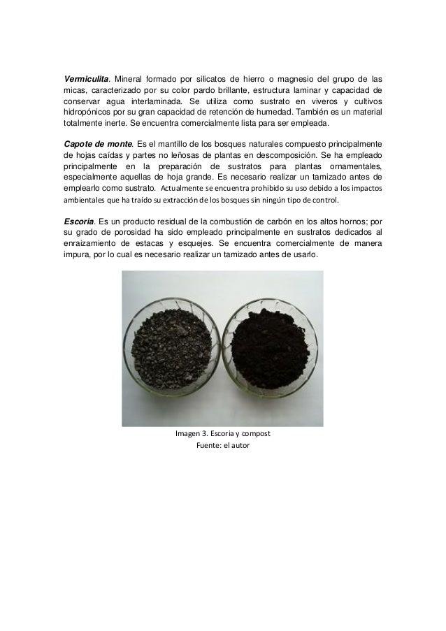 Sustratos para viveros for Mantillo o sustrato