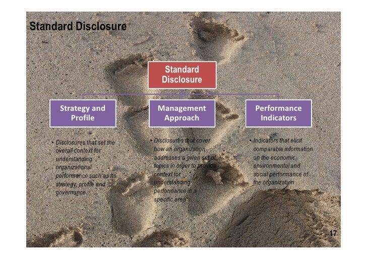 gri guidelines 11 reporting principles
