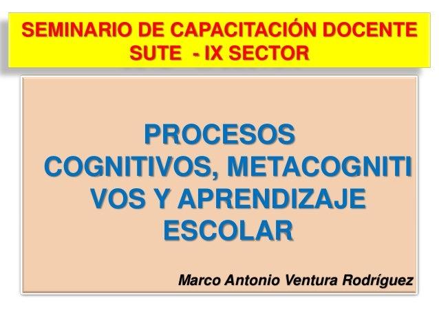 SEMINARIO DE CAPACITACIÓN DOCENTESUTE - IX SECTORPROCESOSCOGNITIVOS, METACOGNITIVOS Y APRENDIZAJEESCOLARMarco Antonio Vent...