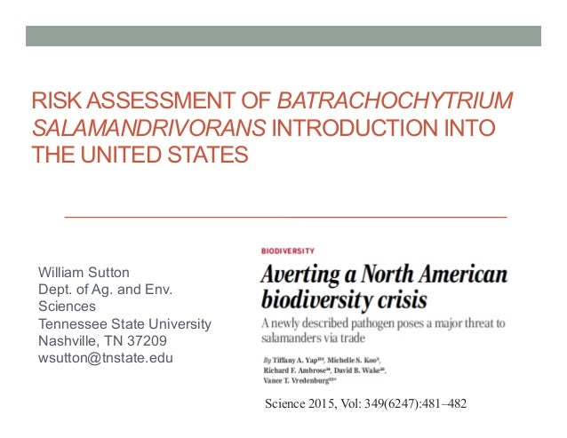 RISK ASSESSMENT OF BATRACHOCHYTRIUM SALAMANDRIVORANS INTRODUCTION INTO THE UNITED STATES William Sutton Dept. of Ag. and E...