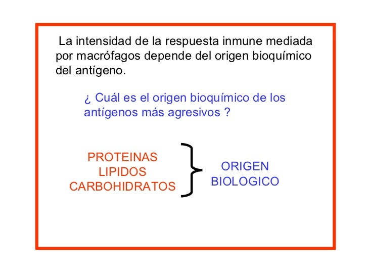 La intensidad de la respuesta inmune mediada  por macrófagos depende del origen bioquímico del antígeno. ¿ Cuál es el orig...