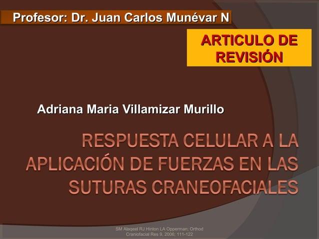 Profesor: Dr. Juan Carlos Munévar N                                                      ARTICULO DE                      ...