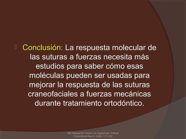    Conclusión: La respuesta molecular de      las suturas a fuerzas necesita más        estudios para saber cómo esas    ...