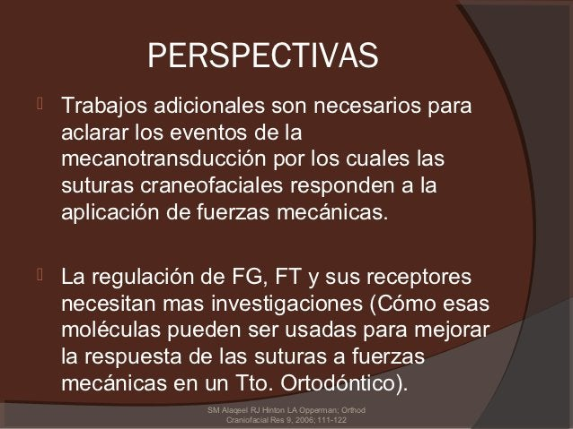 PERSPECTIVAS   Trabajos adicionales son necesarios para    aclarar los eventos de la    mecanotransducción por los cuales...