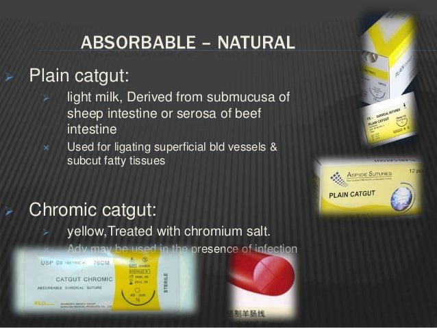 Gut / cat gut  Oldest known absorbable suture.  Galen referred to gut suture as early as 175 A.D.  Derived from sheep i...