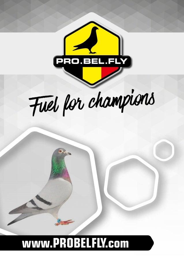 www.PROBELFLY.com Fuel for champions